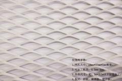 孔径23mmx55mm白色喷涂金属菱形网